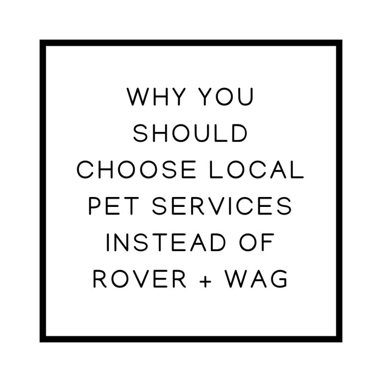 Why You Should Choose Local Pet Services Instead of Rover + Wag
